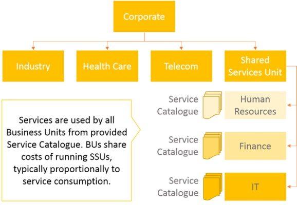 Type II Service providers